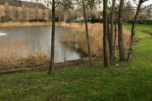 Campanile-Fishing-Lake-Dartford-1
