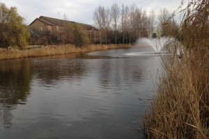 Campanile-Fishing-Lake-Dartford-2