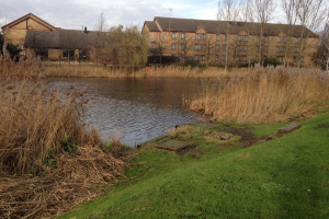 Campanile-Fishing-Lake-Dartford-4