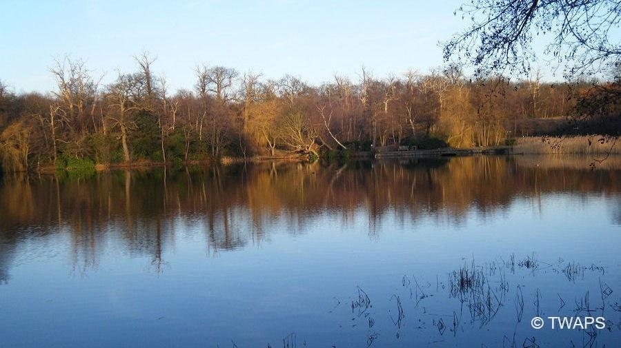 Inn-On-The-Lake-Fishing-Waters-3