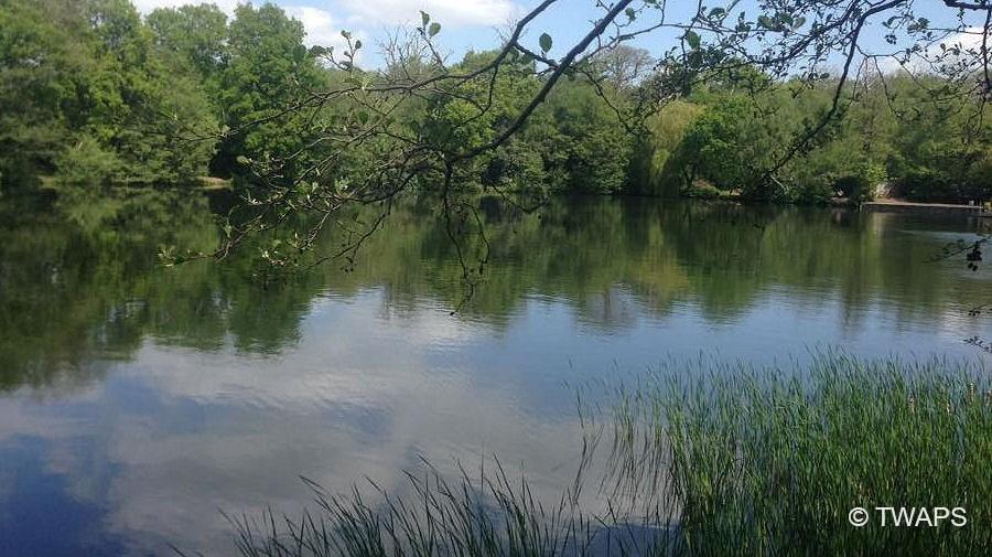 Inn-On-The-Lake-Fishing-Waters-5