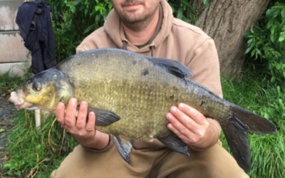 Lee-Tofts-bream