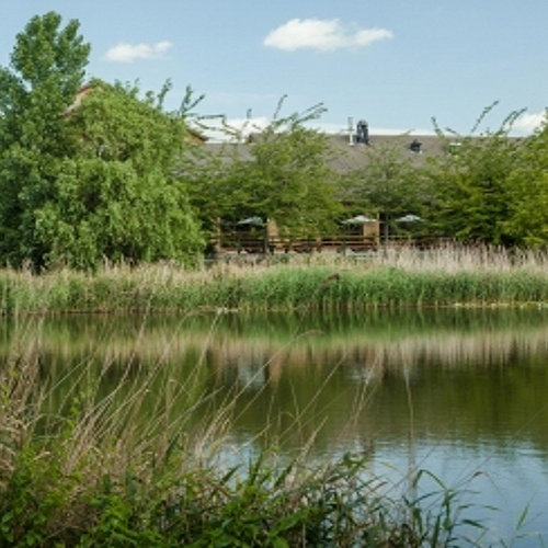 Fishing Lakes - Campanile, Dartford